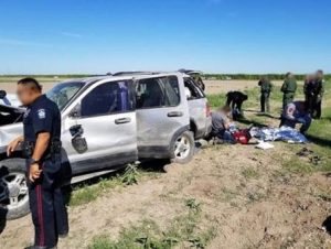 Rollover accident during smuggling of illegal immigrants. Courtesy CBP.