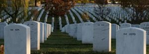 Dying early should be for a reason. Autumn leaves, Section 64 of Arlington National Cemetery. Photo by Rachel Larue.