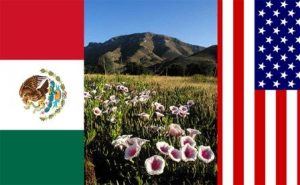 My country wrong but others right? Mexican and American flag. Coronado National Memorial. Courtesy NPS/D. Bly.