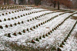 Generosity is  here: Arlington National Cemetery. DOD photo by Sebastian Sciotti Jr.