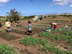 USAID fights despair in Madagascar. Christopher LaFargue/USAID.