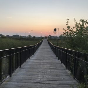 Long foot bridge